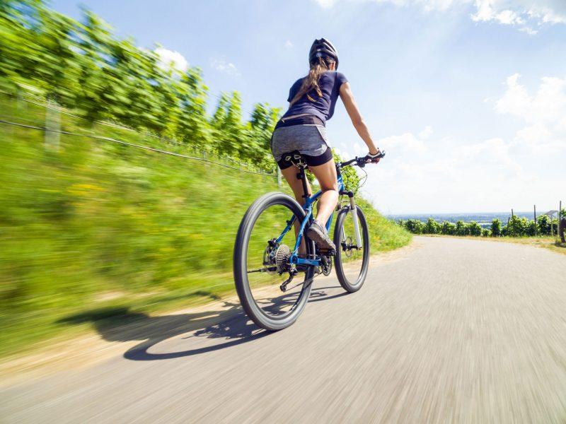 Radtouren für Jedermann